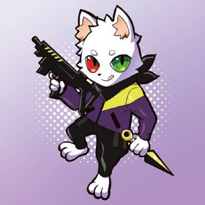 Crazy Raccoon20