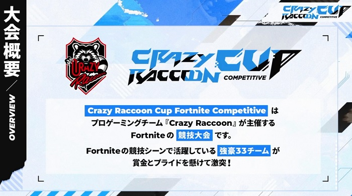 crazyraccoon3