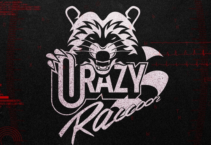 Crazy Raccoon2