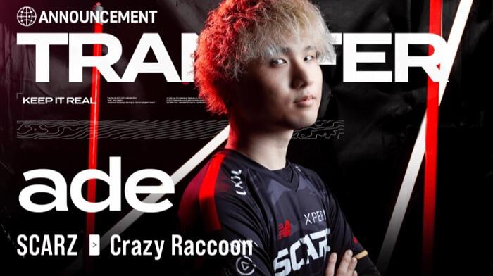 Crazy Raccoon36